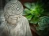 Buddha with Plants